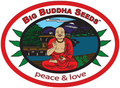 Big Buddha Seeds logo contact