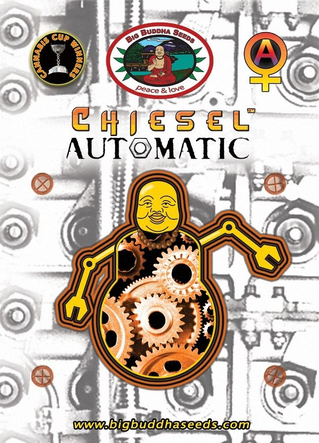 CHIESEL AUTOMATIC ™