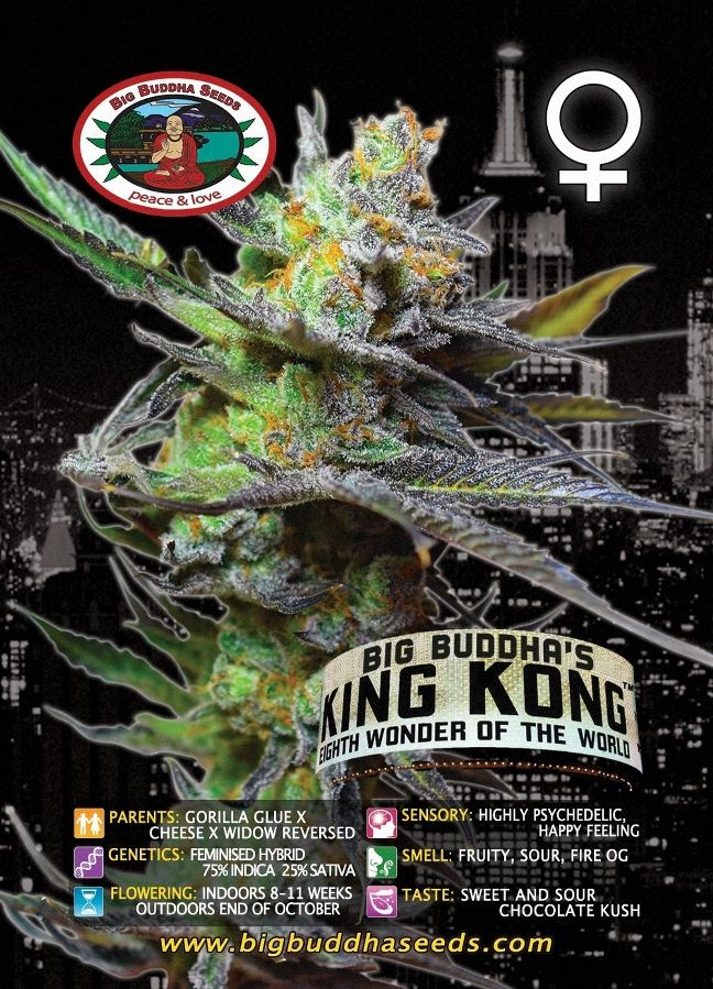 Big Buddha's King Kong ™