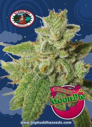 Big Buddha Cherry Moon Pie ™