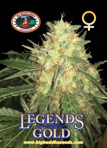 Big Buddha Legends Gold ™